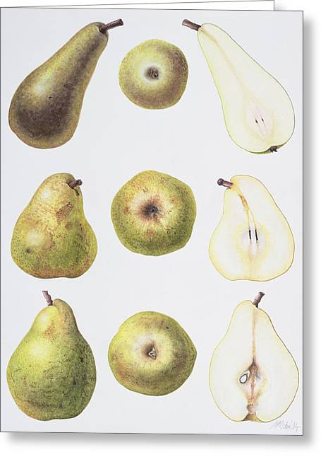 Halved Greeting Cards - Six Pears Greeting Card by Margaret Ann Eden