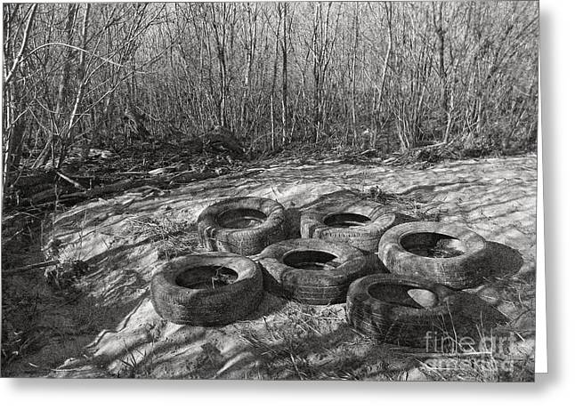 Old Tree Photographs Greeting Cards - Six Tires Greeting Card by Janeen Wassink Searles
