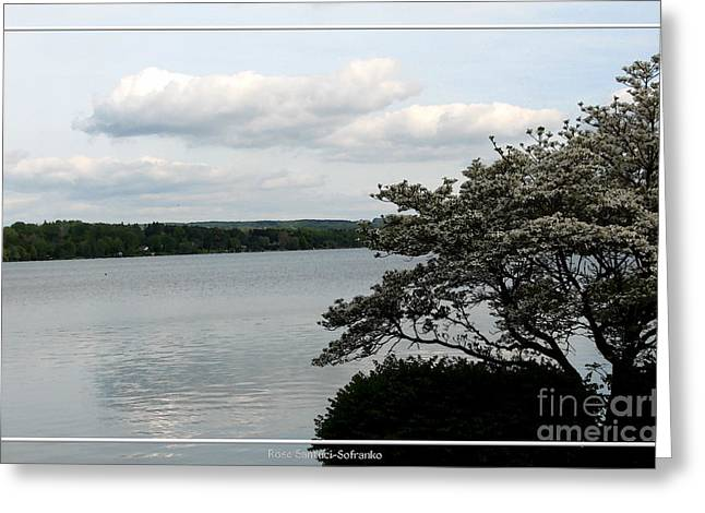 Skaneateles Greeting Cards - Skaneateles Lake in NY Finger Lakes Water Color Effect Greeting Card by Rose Santuci-Sofranko