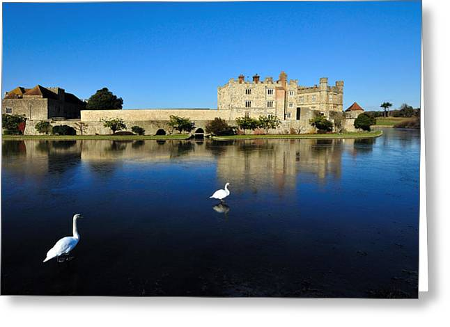 Castle. Birds Greeting Cards - Skating Swans Greeting Card by Bel Menpes