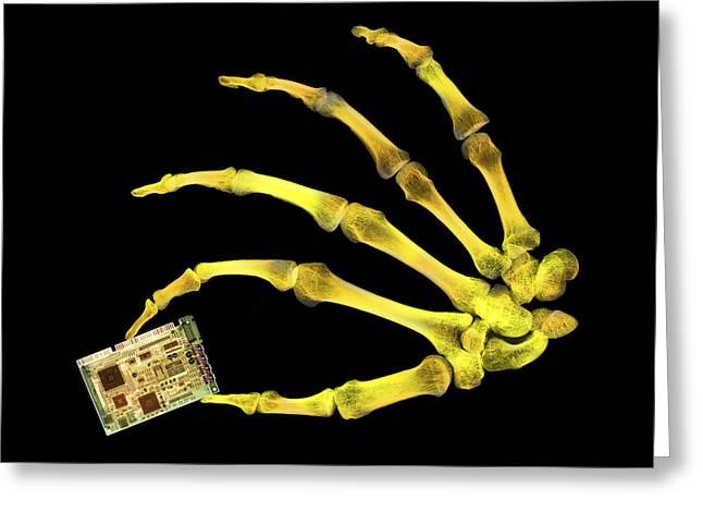 Sound Board Greeting Cards - Skeleton Holding Sound Board Greeting Card by D. Roberts