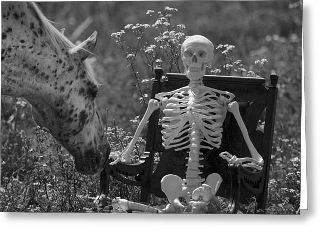 Appaloosa Greeting Cards - Skeleton in my Closet Greeting Card by Betsy C Knapp