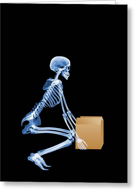 Wellbeing Greeting Cards - Skeleton Lifting A Box Correctly Greeting Card by D. Roberts