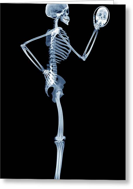 Hand Mirror Greeting Cards - Skeleton Looking In A Mirror Greeting Card by D. Roberts