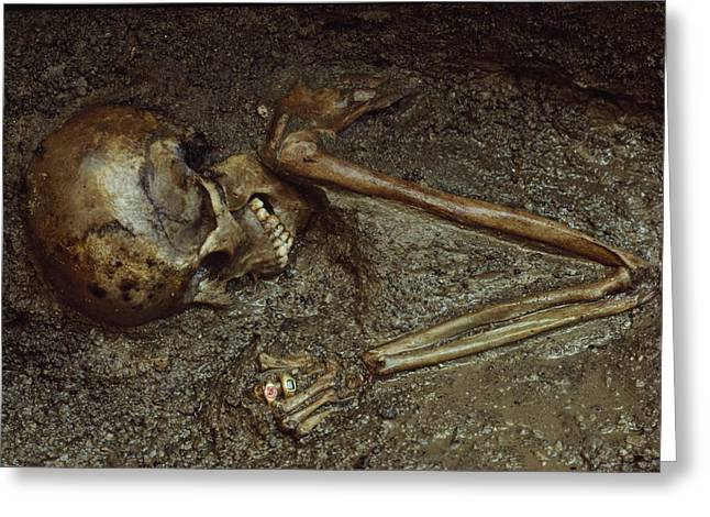 Herculaneum Greeting Cards - Skeleton Of Woman Buried In Volcanic Greeting Card by Jonathan Blair