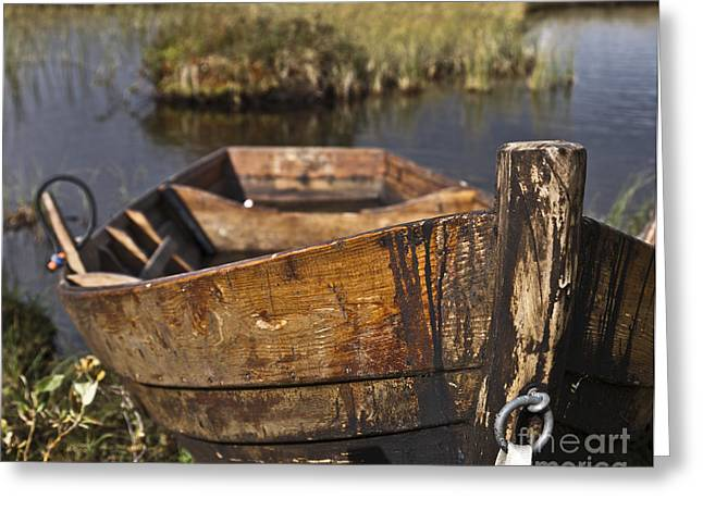 Row Boat Greeting Cards - Skiff in swedish swamp Greeting Card by Heiko Koehrer-Wagner
