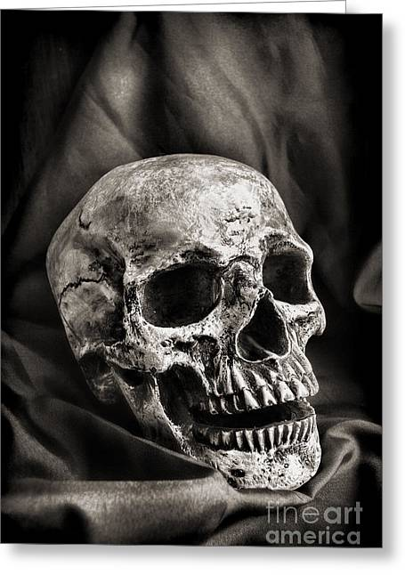 Morbid Greeting Cards - Skull Greeting Card by HD Connelly