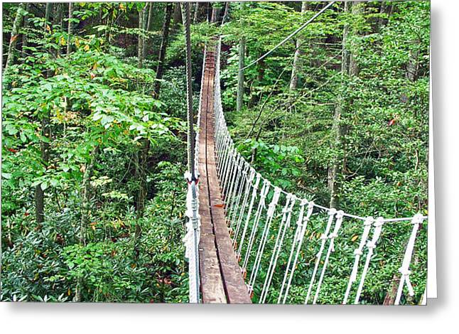 Sky Bridge 2 Greeting Card by Aimee L Maher Photography and Art