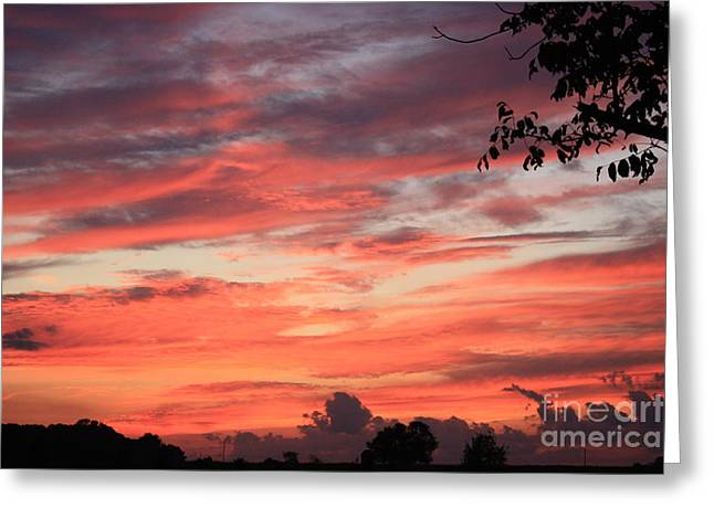Best Sellers -  - Becky Greeting Cards - Sky on Fire Greeting Card by Becky Neu