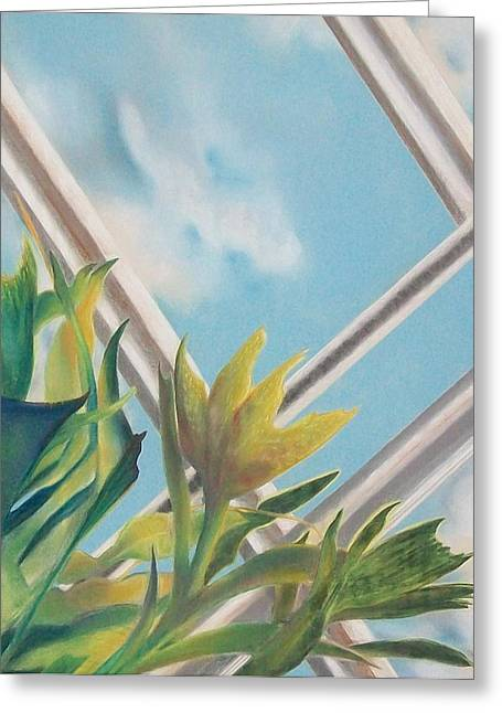 Reach Pastels Greeting Cards - Skylight #2 Greeting Card by Connie Sherman