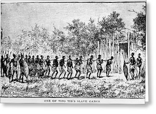 Slaves Greeting Cards - SLAVE TRADE, c1890 Greeting Card by Granger