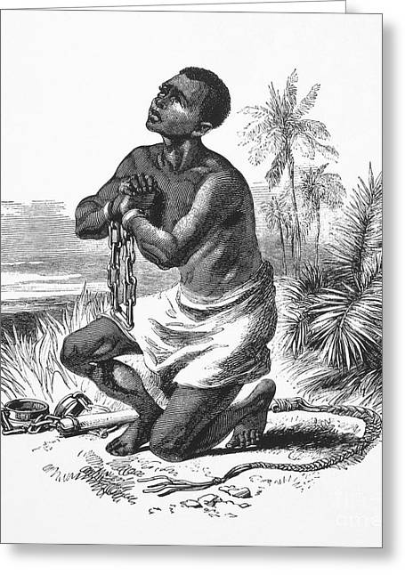 Abolition Greeting Cards - Slavery: Abolition Greeting Card by Granger