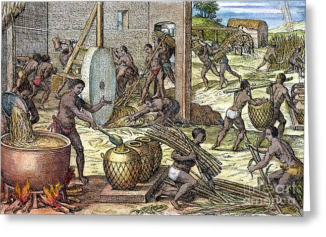 1596 Greeting Cards - Slavery: West Indies Greeting Card by Granger