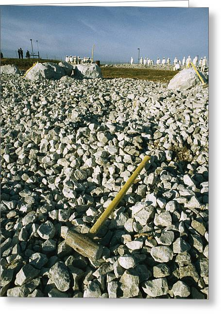 Sledgehammer In A Field Of Rock Greeting Card by Bill Curtsinger