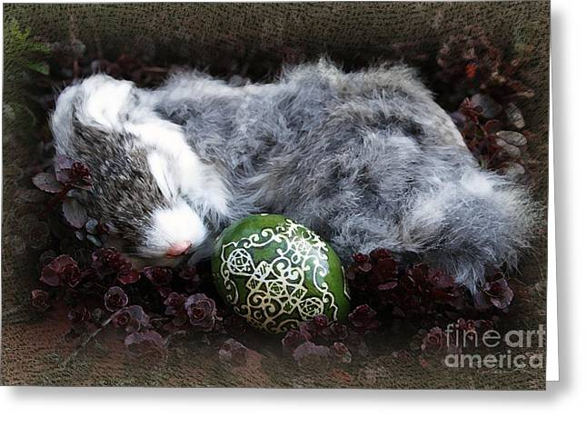 Ukrainian Prints Greeting Cards - Sleeping Easter Bunny Greeting Card by Danuta Bennett
