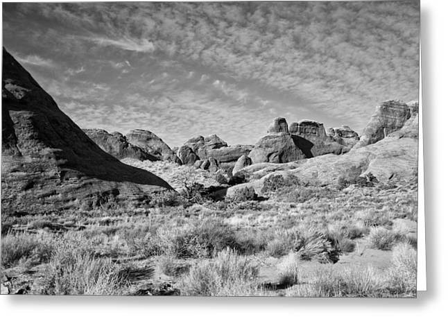 Slick Rocks In The Middle Greeting Card by Wilma  Birdwell