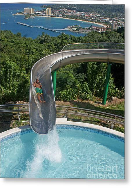 David Birchall Greeting Cards - Slide With a View  Greeting Card by David Birchall