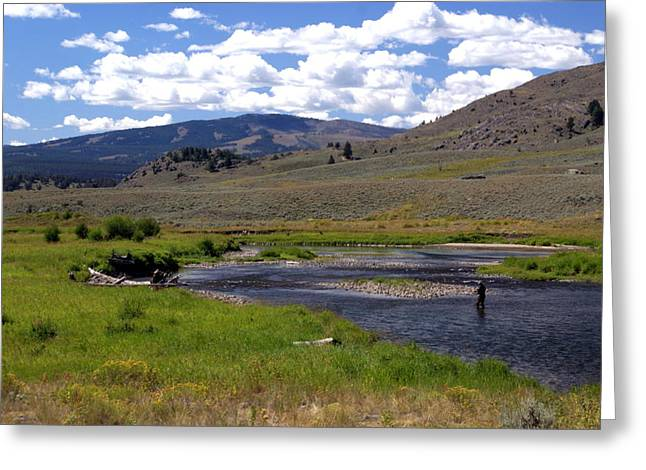 Slough Creek Angler Greeting Card by Marty Koch