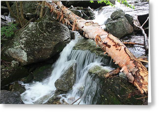 Clean Water Mixed Media Greeting Cards - Small Beautiful waterfalls Greeting Card by Tom Johnson