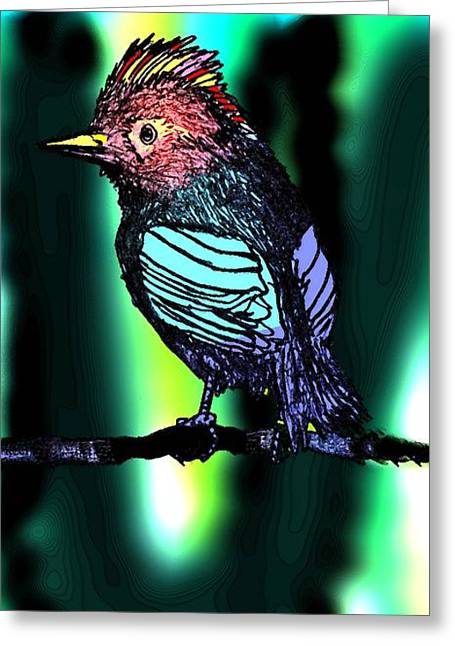 Colour Greeting Cards - Small Birds Art  Greeting Card by Mario  Perez