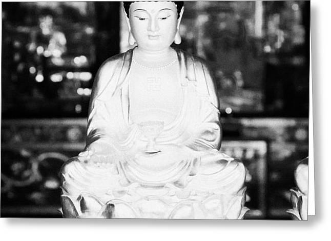 small golden buddha statue in monastery of ten thousand buddhas sha tin new territories hong kong Greeting Card by Joe Fox