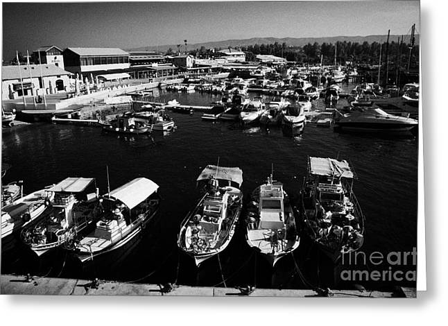 Pafos Greeting Cards - Small Local Greek Cypriot Fishing Boats With Expensive Pleasure Craft In Kato Paphos Harbour Cyprus Greeting Card by Joe Fox