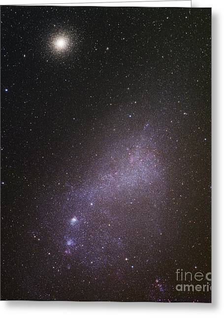 Small Magellanic Cloud Greeting Cards - Small Magellanic Cloud Greeting Card by Robert Gendler