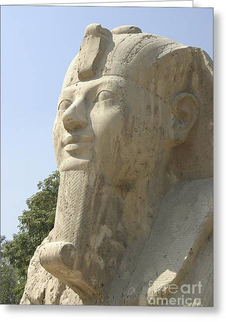 Pharaoh Greeting Cards - Small Sphinx Greeting Card by Darcy Michaelchuk