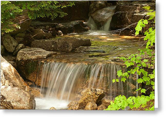 Stream Greeting Cards - Small Stream Greeting Card by Paul Mangold