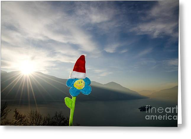 Sun Hat Greeting Cards - Smile flower with christmas hat Greeting Card by Mats Silvan