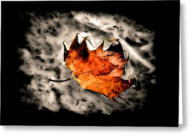 Abstract Water And Fall Leaves Greeting Cards - Smoke on the Water Greeting Card by Karen M Scovill