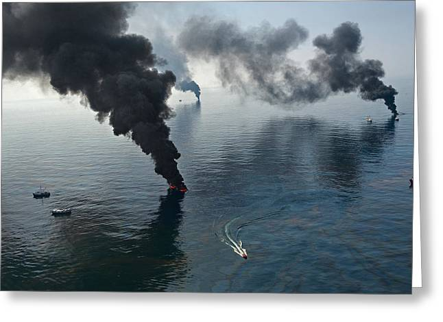 Wildlife Disasters Greeting Cards - Smoke Rises From Surface Oil Greeting Card by Joel Sartore