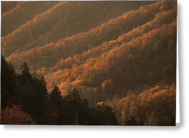 Gap Greeting Cards - Smokies Hillside at Autumn Greeting Card by Andrew Soundarajan