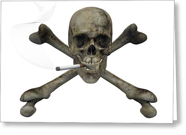 Carcinogenic Greeting Cards - Smoking Skull And Crossbones Greeting Card by Friedrich Saurer