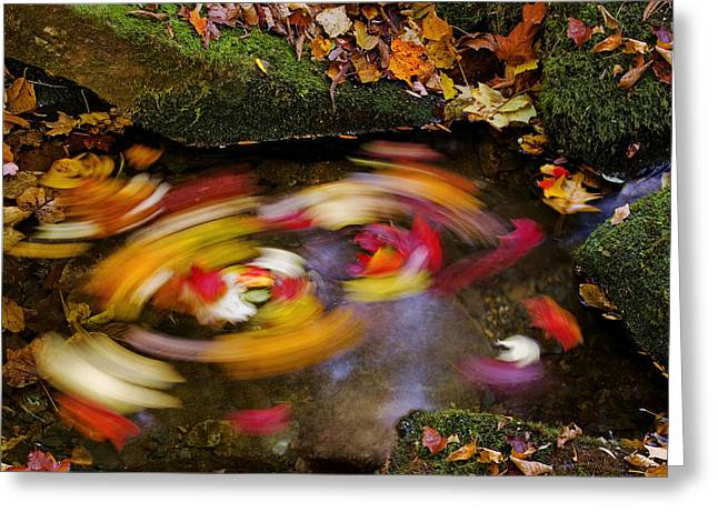 North Fork Greeting Cards - Smoky Mountain Whirlpool Greeting Card by Rich Franco