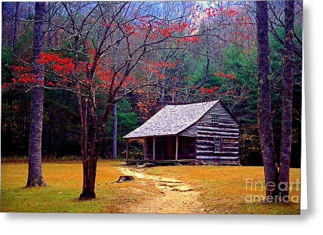 Smoky Mtn. Cabin Greeting Card by Paul W Faust -  Impressions of Light