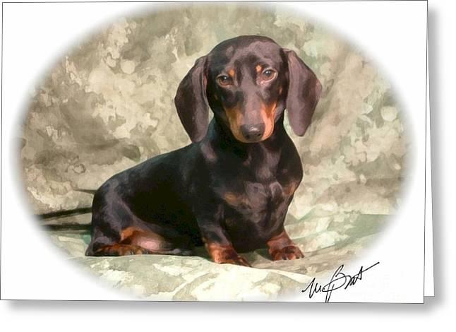 Dachshund Puppy Digital Art Greeting Cards - Smooth Dachshund Doxie pup Greeting Card by Maxine Bochnia