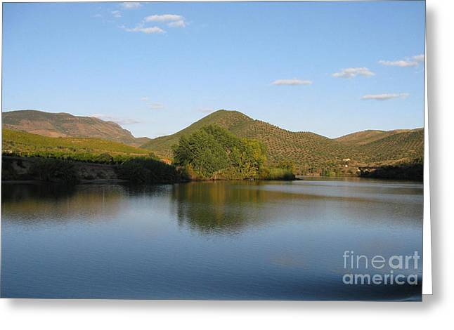 Smooth Sailing On The Douro Greeting Card by Arlene Carmel