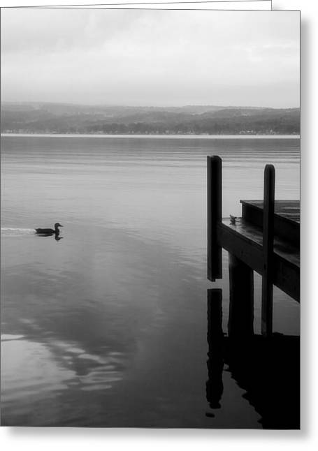 Finger Lakes Greeting Cards - Smooth Sailing Greeting Card by Steven Ainsworth