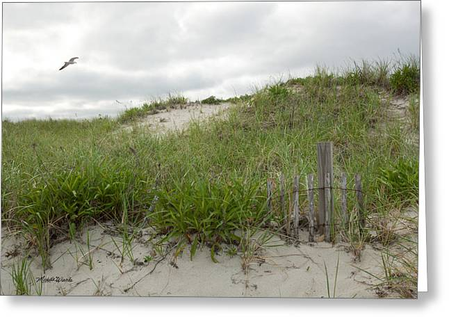 Storm Clouds Cape Cod Greeting Cards - Smugglers Beach Dune South Yarmouth Cape Cod Massachusetts Greeting Card by Michelle Wiarda