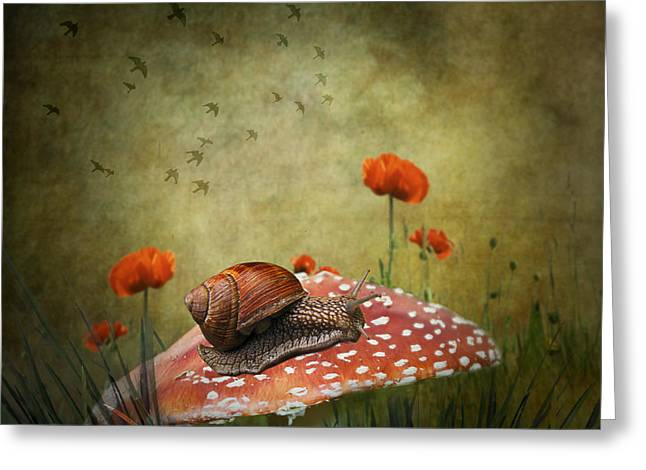 Surrealism Greeting Cards - Snail Pace Greeting Card by Ian Barber