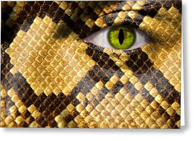 Morphing Photographs Greeting Cards - Snake Eye Greeting Card by Semmick Photo
