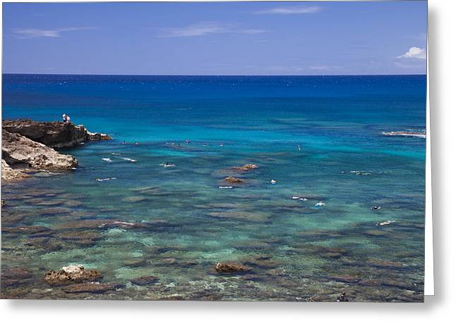 Sharks Cove Greeting Cards - Snorkelers Explore Spectacular Reef Greeting Card by Taylor S. Kennedy