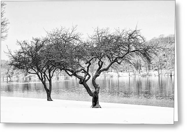 Snow Along the Schuylkill River Greeting Card by Bill Cannon