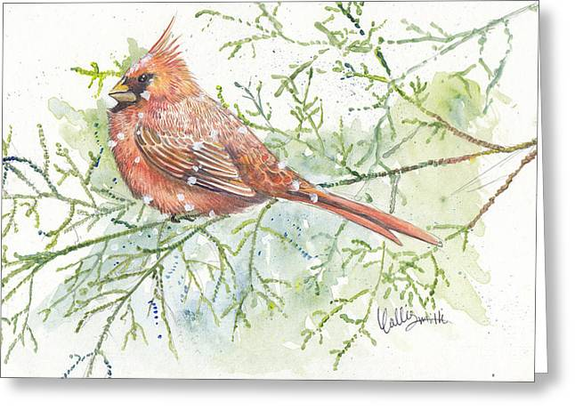 Bird Art Greeting Cards - Snow and Cardinal Greeting Card by Callie Smith