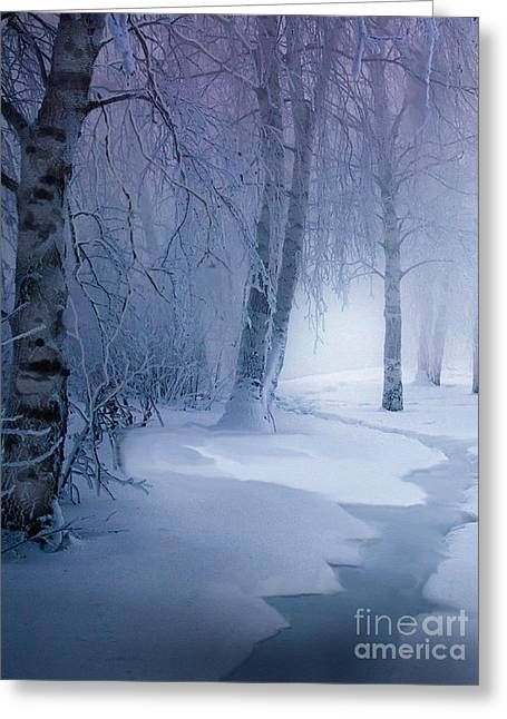 Birch Tree Greeting Cards - Snow Brook Greeting Card by Robert Foster