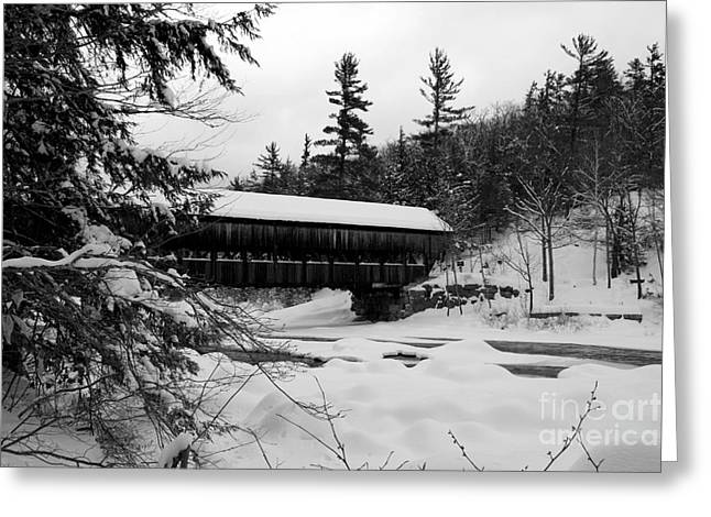 Lloyd Alexander Greeting Cards - Snow Covered Bridge Greeting Card by Lloyd Alexander