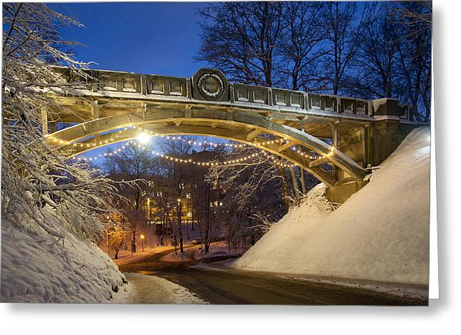 Winter Night Greeting Cards - Snow Covered Devil`s Bridge In Winter Greeting Card by Jaak Nilson