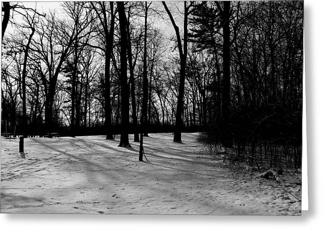 Mohawk Park Greeting Cards - Snow Covered in Black and White Greeting Card by Corinne Elizabeth Cowherd