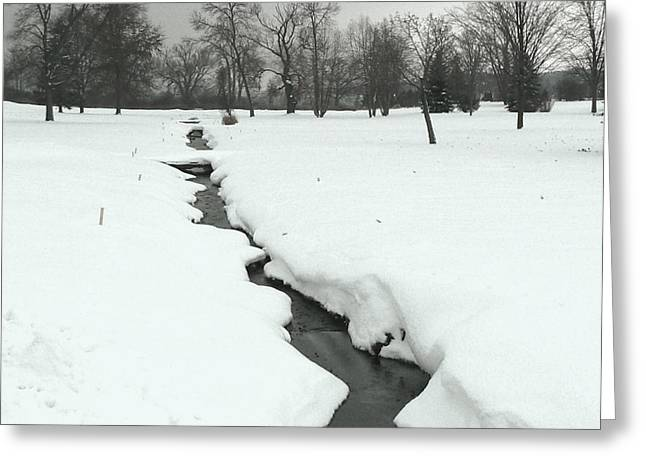 Skaneateles Greeting Cards - Snow Creek in Skaneateles NY Greeting Card by Diana Besser